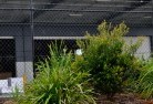 Ashbourne VIC Chainlink fencing 13