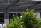 Ashbourne VIC Wire fencing 20